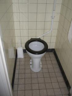 anitair toilet