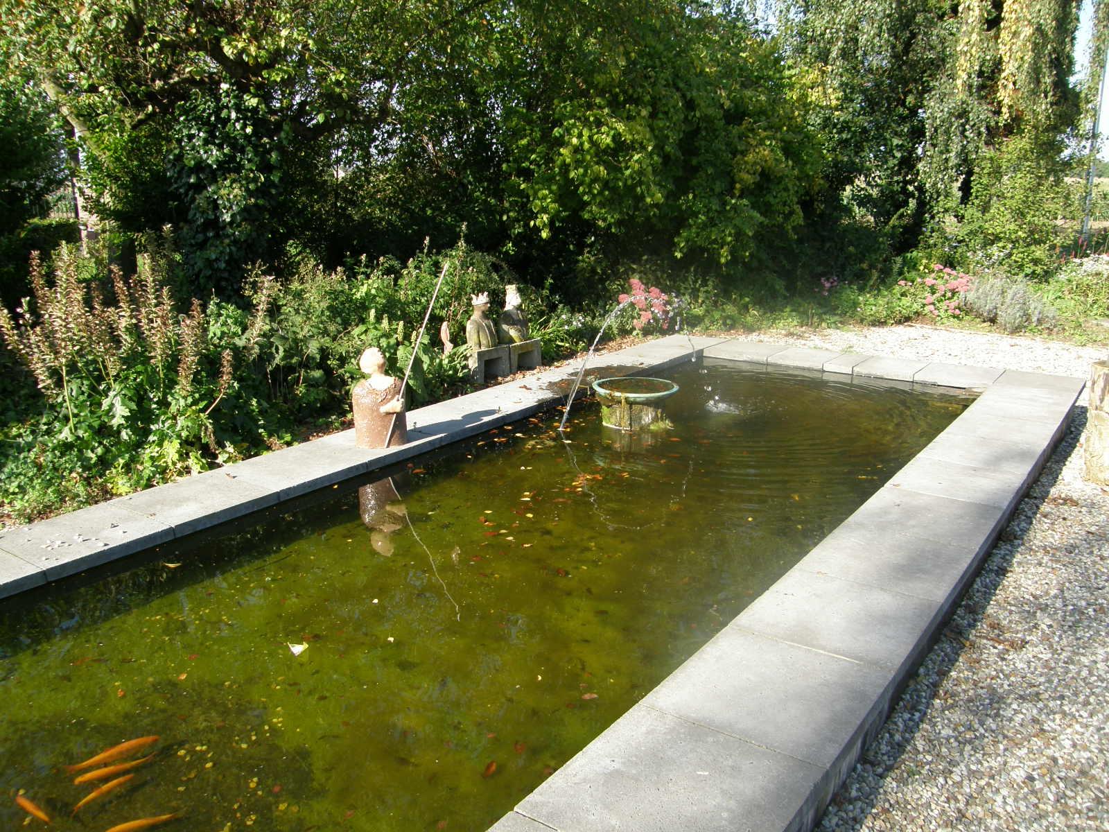 Arnhem vijver zwemvijver en zwembad aanleg en onderhoud for Vissen vijver